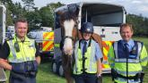 Local Garda initiative to highlight safety of horses and riders on roads
