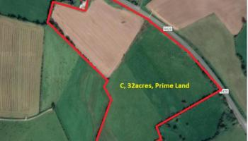 32 acres of Offaly farmland fetches huge sum at auction