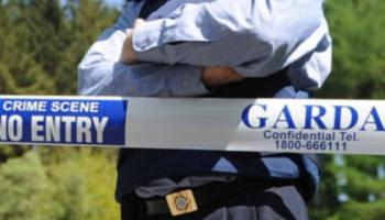 Gardai seize 11 vehicles from dealership as part of money laundering investigation